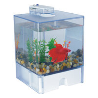 Triol Амма Agua Box Betta Аквариум для петушков 15х15х17 см 3л